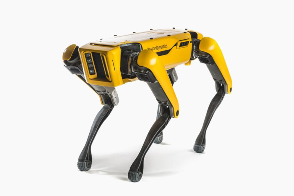 spot robot dog